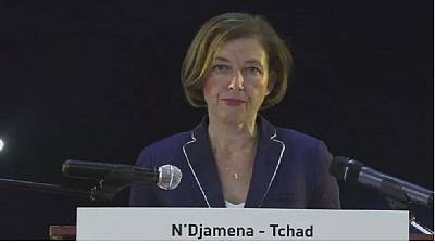French Defence Minister visits Chad
