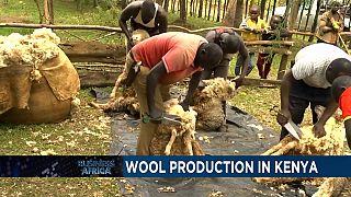 La laine, une matière innovante au Kenya