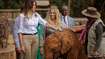 Melania Trump met baby elephants during her Kenyan visit [No Comment]