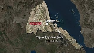 Ethiopia's Tigray region frees 43 Eritreans