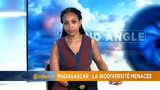 Madagascar: Logging threatens biodiversity [The Morning Call]