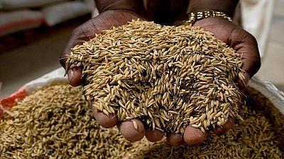 Trait d'histoire: à la (re) découverte d'un évangile contre la dépendance alimentaire en Afrique