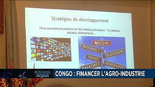 Congo calls for agro-industry financing
