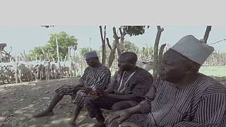 Nigeria: intercommunal violence kills 55
