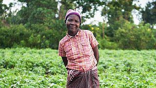 """""""Combattre la pauvreté"""" : le revenu universel testé au Kenya"""