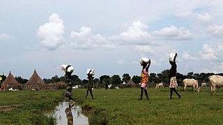 Soudan du Sud : des populations privées de l'aide alimentaire par les violences