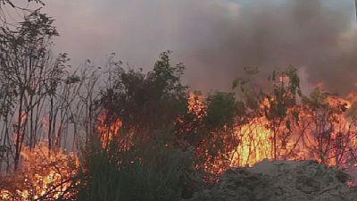 En Afrique du Sud, des feux de brousse font plusieurs morts