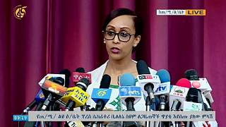 Ethiopia PM appoints woman as official spokesperson