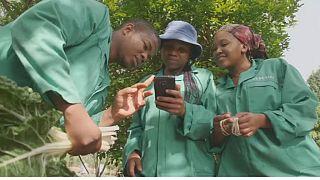 Award-winning farming app boosts South Africa's black farmers