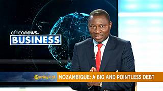 Mozambique's huge and pointless debt [Business]