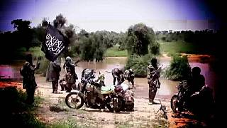 Media head of Boko Haram faction killed - Nigeria army claims