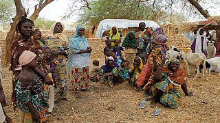 Niger : des élus réclament la libération de 15 femmes enlevées par Boko Haram