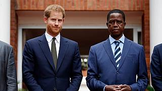 Prince Harry to facilitate elephant transfer from Botswana to Zambia