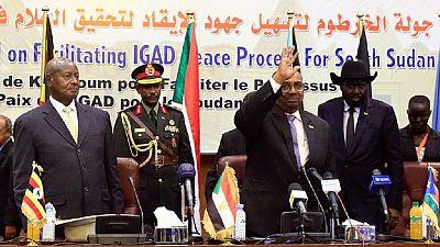 Soudan du Sud: des pays voisins ont bravé l'embargo sur les armes pour alimenter la guerre civile (rapport)