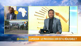 Cameroon's govt sets up DDR for ex-militants [The Morning Call]