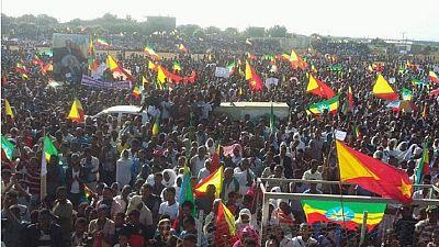 Ethiopia's Tigray region plans 'Respect the Constitution' rally