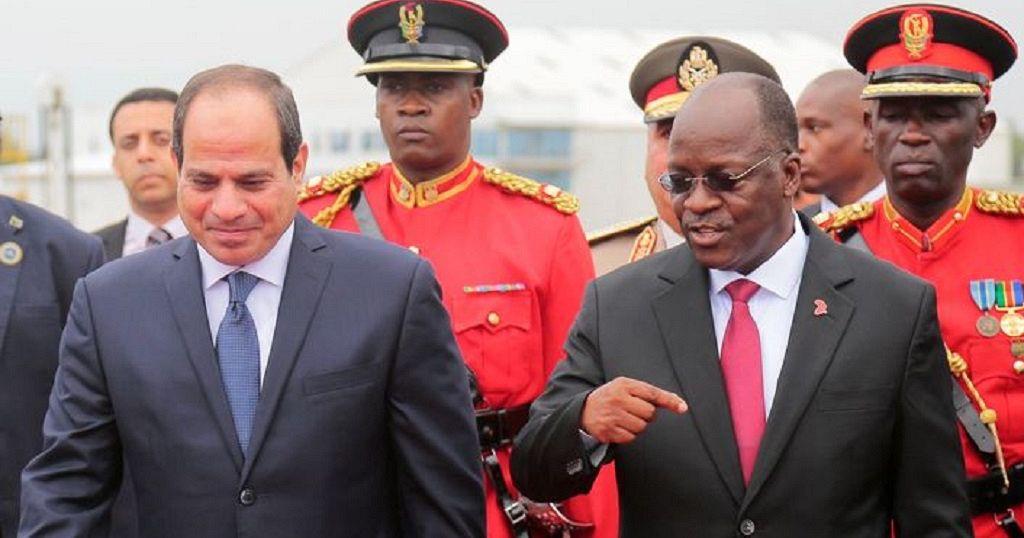 Egyptian firms to build Tanzania's 'controversial' $3 bn dam