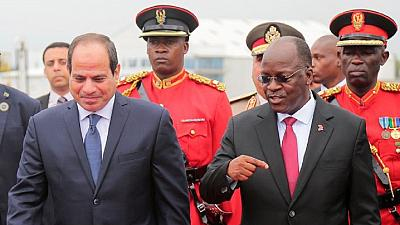 Egyptian firms to build Tanzania's 'controversial' $3 bn dam