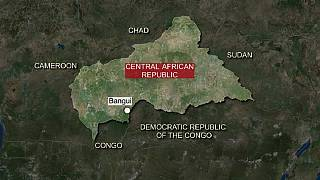Russia's forays will not stabilize Central African Republic - France