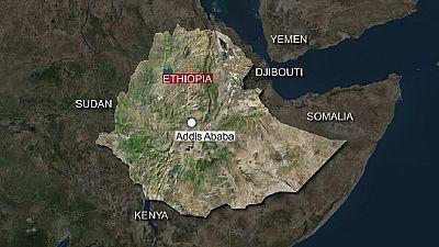 Éthiopie : près de 12 civils tués dans une fusillade dans un hôtel
