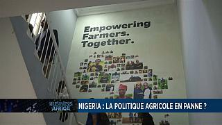 Nigeria: agricultural policy broken down?