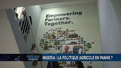 Nigeria: agricultural policy broken down?
