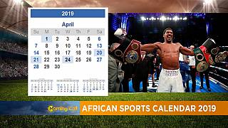 2019 sports calendar: Will Africa bring home a World Cup next year?