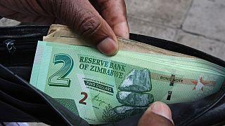 Zimbabwe govt warns businesses against 'dollarising' economy