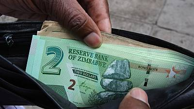 Zimbabwe govt warns businesses against 'dollarising' economy