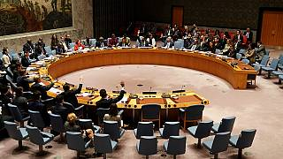 UN. Security Council divided over reactions to DRC's poll problems