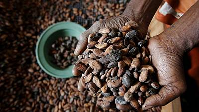 Ghana hopes to increase cocoa processing locally
