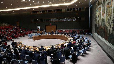 RDC : une réunion du Conseil de sécurité sur la présidentielle reportée