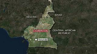 Trial of Cameroon separatist leaders adjourned to Feb. 7