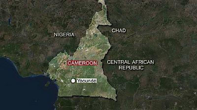 Trial of Cameroon separatist leaders adjourned to Feb. 7