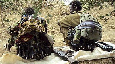 Ethiopia nabs over 800 returnee OLF fighters disturbing Oromia
