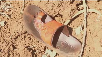 L'armée américaine tue 52 islamistes somaliens au cours de frappes aériennes