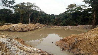 Congo-Brazzaville : d'importants dégâts environnementaux causés par des Chinois au nord