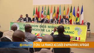 How true are allegations of France impoverishing Africa? [The Morning Call]