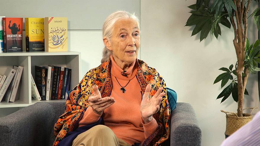 Jane Goodall reinforces her wildlife conservation initiative in the UAE