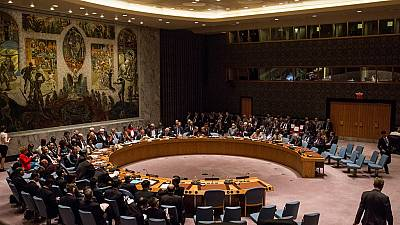 U.N. Security Council to review C.A.R. arms embargo