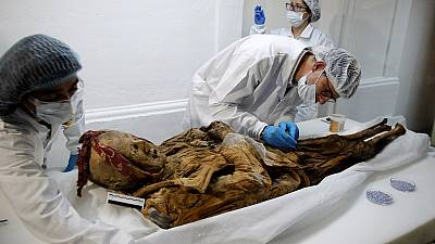 Ecuadorean mummy could shed light on history of diseases