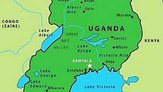 Uganda: 3-year-old girl loses 'genital' in UK