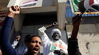 Sudanese teacher who died in custody was tortured - Investigator