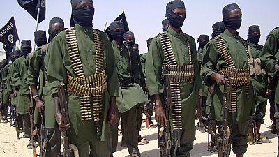 Somalie : 15 Shebab présumés tués dans des frappes aériennes américaines
