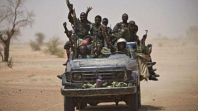 """Colonne rebelle au Tchad : plus de 250 """"terroristes"""" capturés (armée)"""