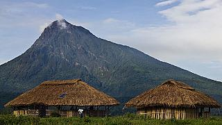 DRC reopens Virunga, Africa's oldest national park, after deadly ambush