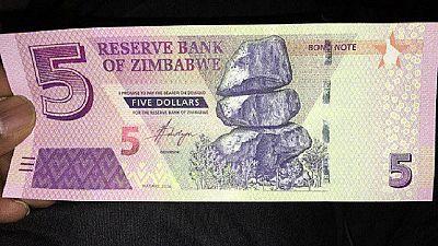 Zimbabwe to launch new Inter-bank forex market