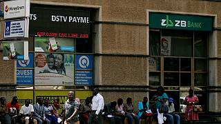 Zimbabwe - Nouvelle quasi-monnaie : le scepticisme demeure