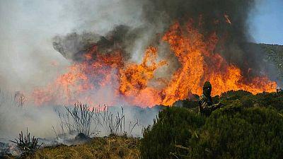 Fund raiser to quell blaze on Africa's second highest peak - Mount Kenya