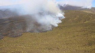 Wild fire engulfs Mount Kenya